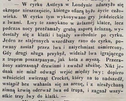 Znalezione obrazy dla zapytania cyrk astleya
